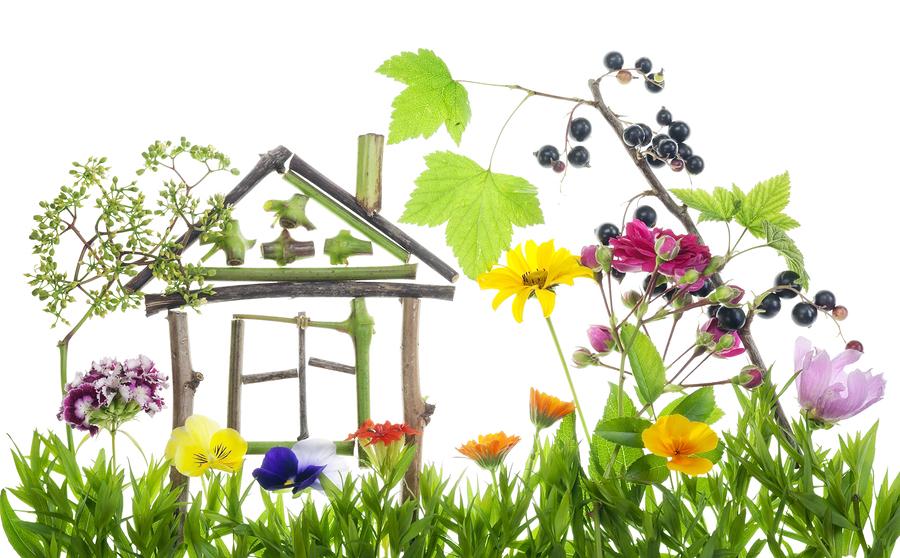 houses for green energy